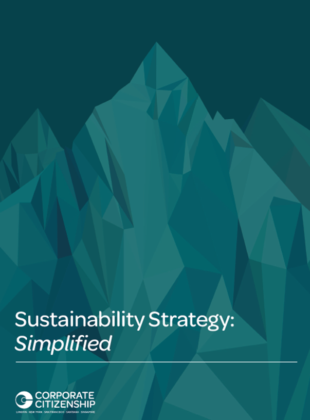 Sustainability Strategy Simplified Paper